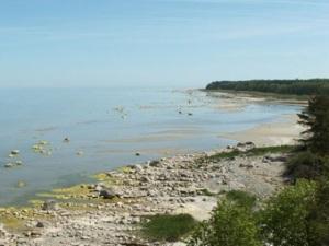 Sunken Soviet sub found off Estonia